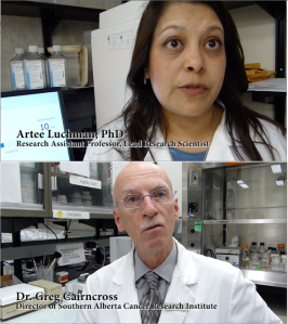 Interview pix with lead researcher Artee Luchman, PhD, and oncologist Dr. Greg Cairncross.