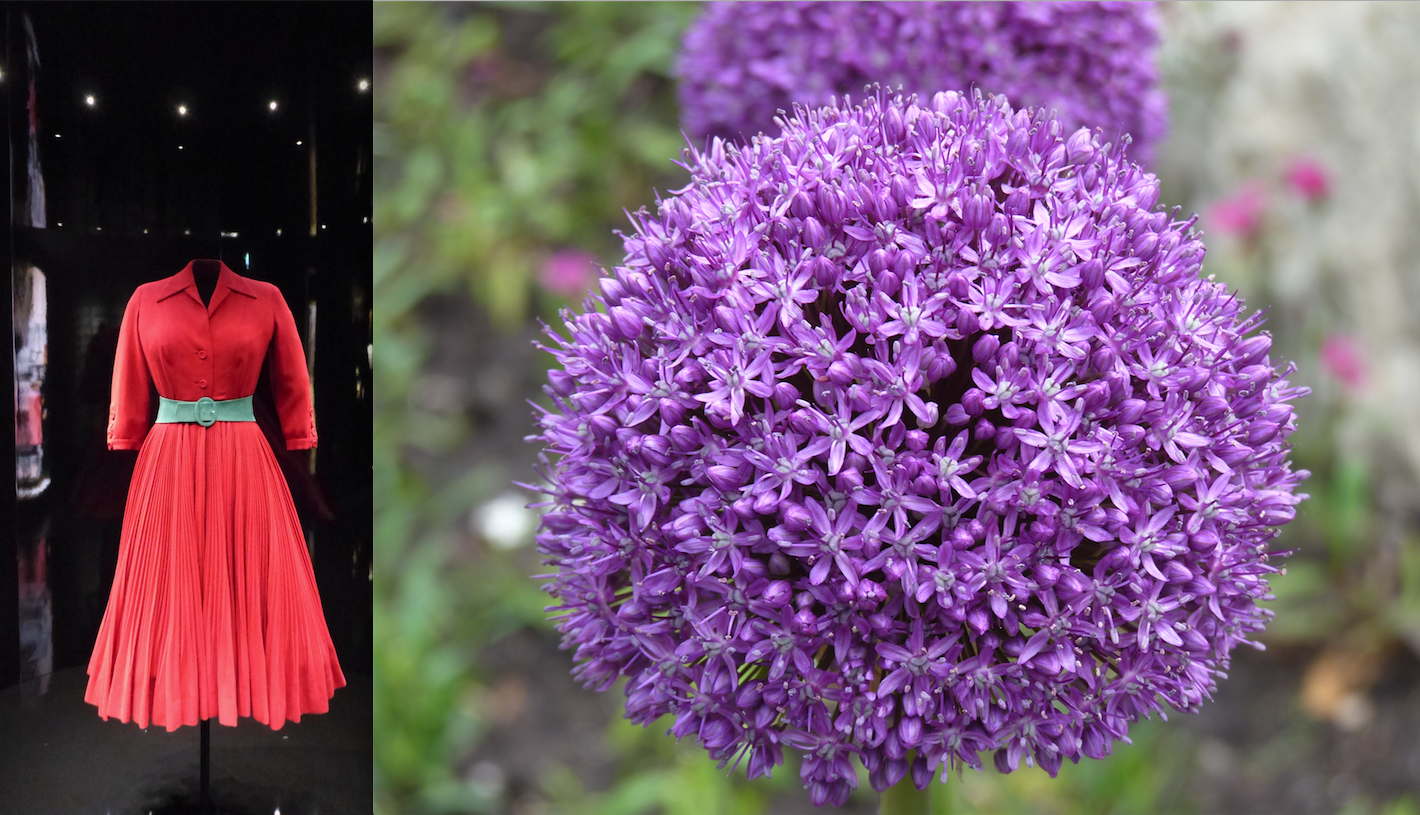 20200510 - Colourful Dresses & Colourful Flowers (彩裙 彩花) - A 2020 Mother's Day Poem by Kempton Lam - 00 Dress & Flower Pix